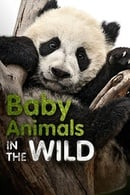 Baby Animals in the Wild (2015)